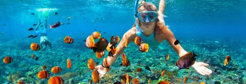 The Best Snorkeling Trips on Koh Chang